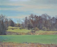"""""""Lush Pasture,"""" 2019, oil on canvas, by Karen Evans is on display in the East Wing Gallery in the Raymond LaFontaine Fine Arts Center through September 25, 2019."""